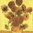 sherlocktheplant