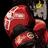 boxer2077